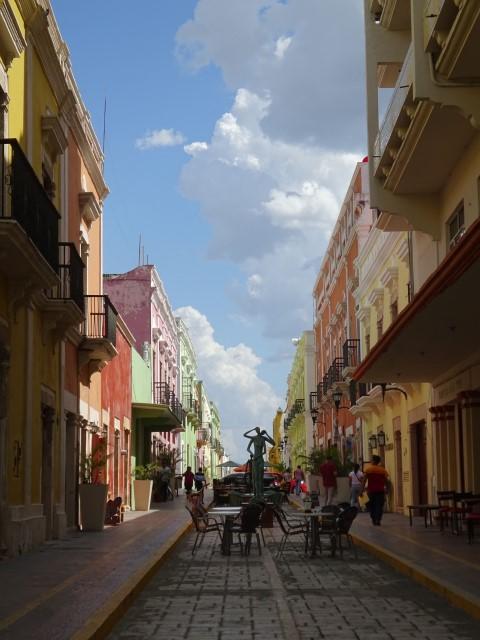 G. Campeche (2) (Small)